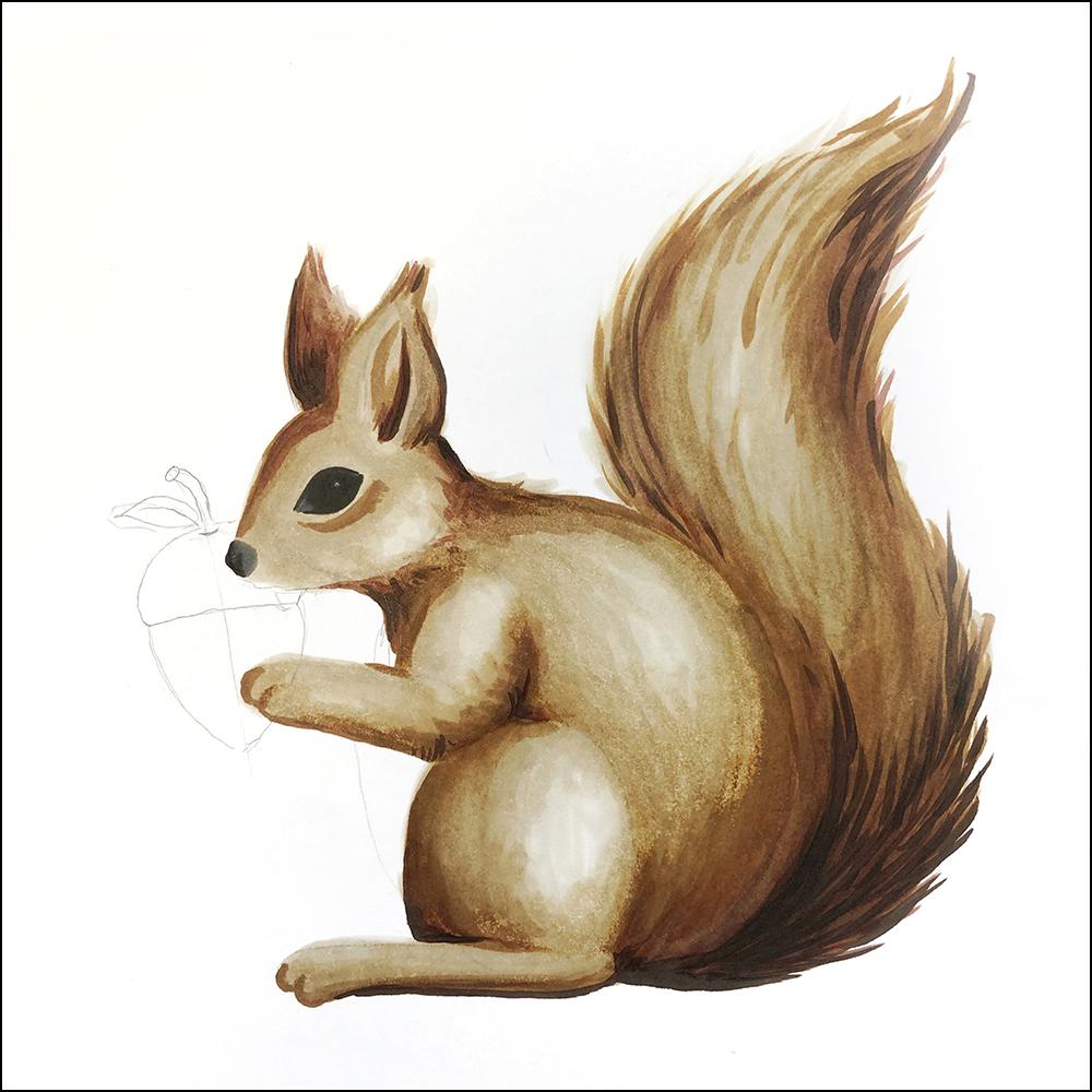 34 eichhörnchen malen einfach - besten bilder von ausmalbilder