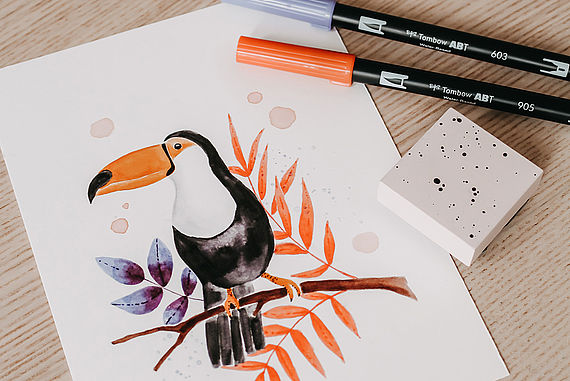 Draw a toucan